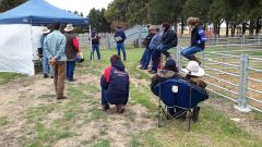 Judges-training-day-Lucindale-2014-.jpg